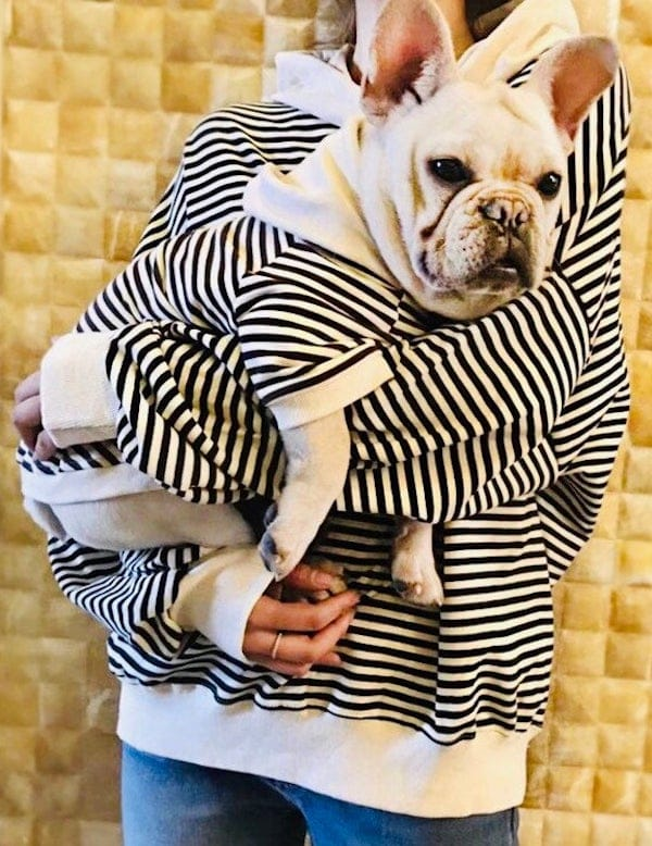 Match Your Pup Striped Dog And Owner Hoodie