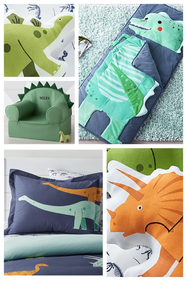 Dinosaur Themed Room Decor and Sleeping Bag